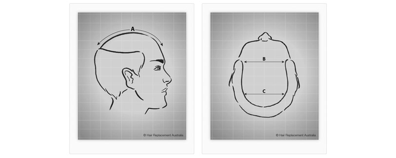 Template - Head Measurements